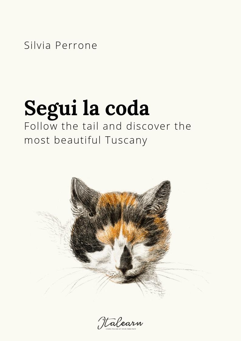 Segui la coda - copertina - ed 2019 - italearn.com