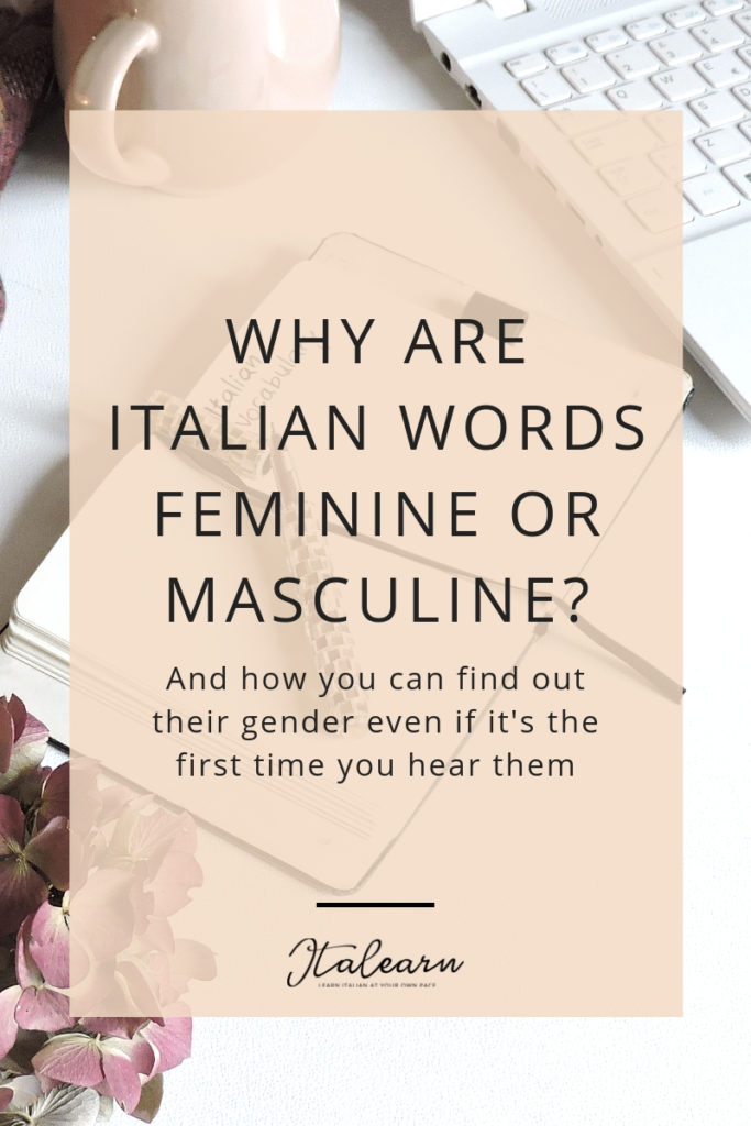 WHY ARE ITALIAN WORDS FEMININE OR MASCULINE_ - italearn.com