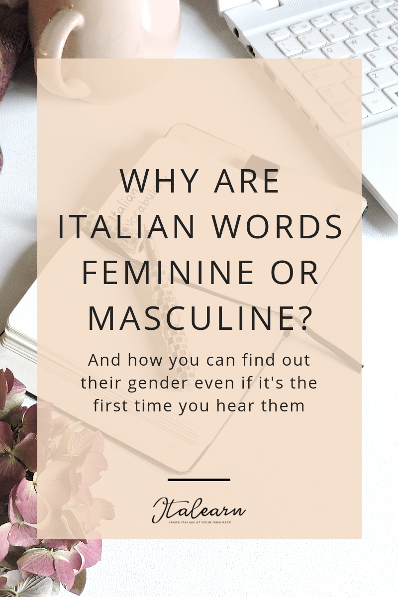 WHY ARE ITALIAN WORDS FEMININE OR MASCULINE_ – italearn.com